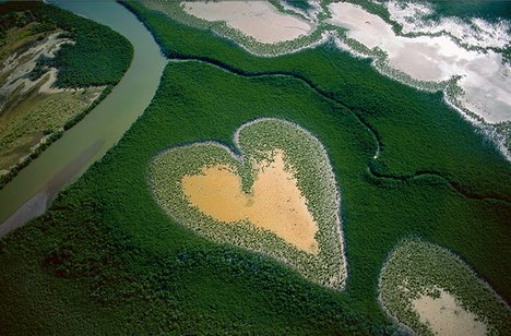 vol-heart-yann-arthus-bertrand-468