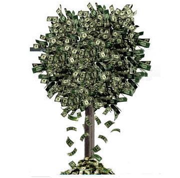 foto_azimut_albero_soldi1